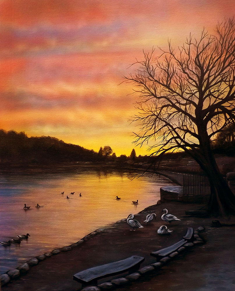 Sunset Swans on Newmillerdam by Jenny Hutchinson
